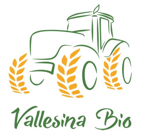Vallesina-Bio---Logo-singolo
